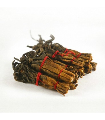American Ginseng with Cordyceps Essence