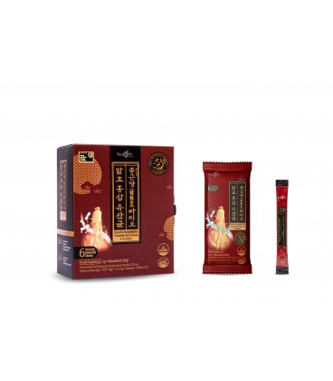 Youguth Fermented Red Ginseng & Probiotics 60S